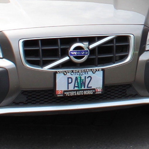PAW Volvo cropped